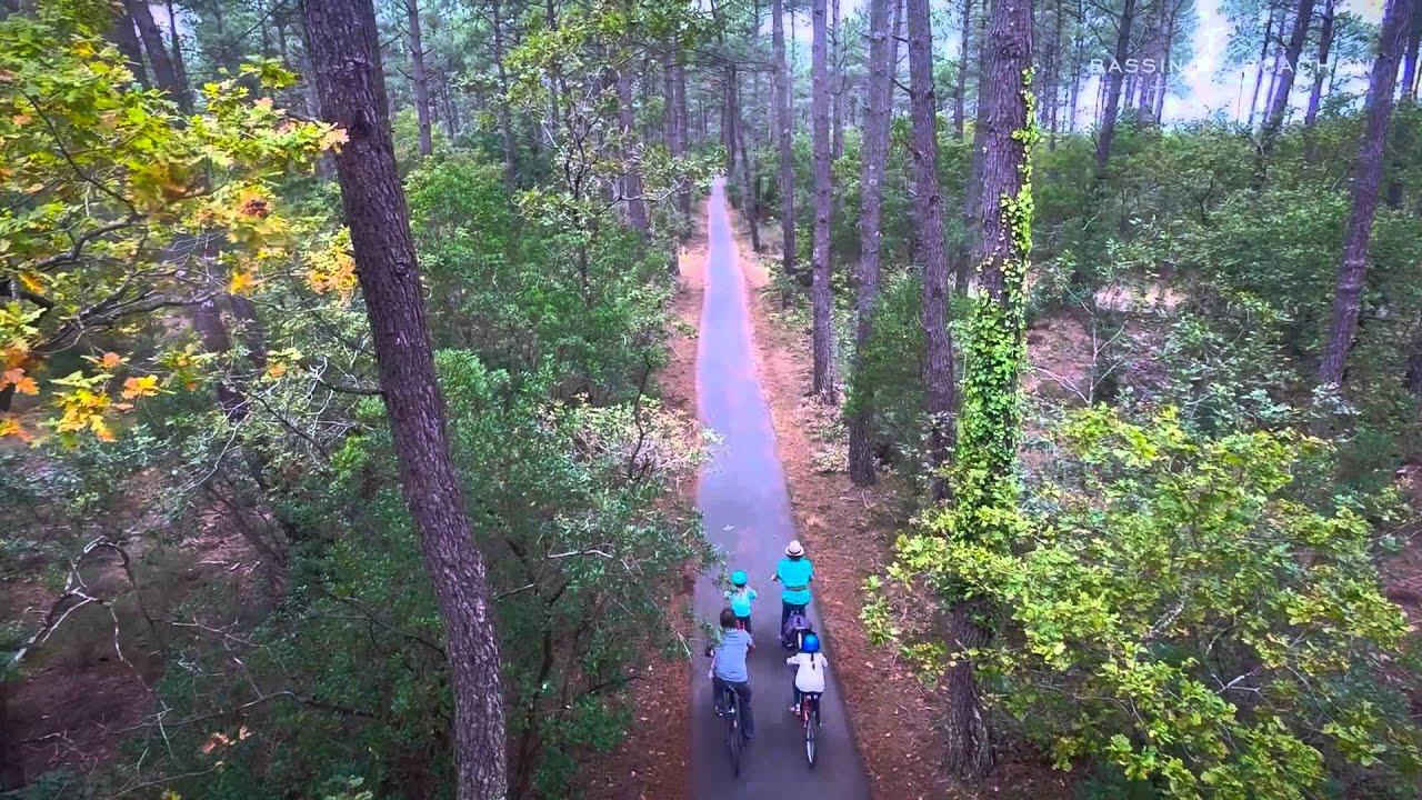 balade à vélo en forêt